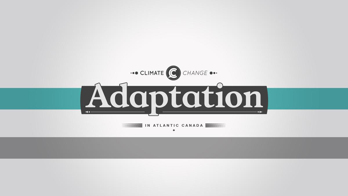 04-Titles_Adaptation